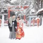 伏見 雪の中でお散歩